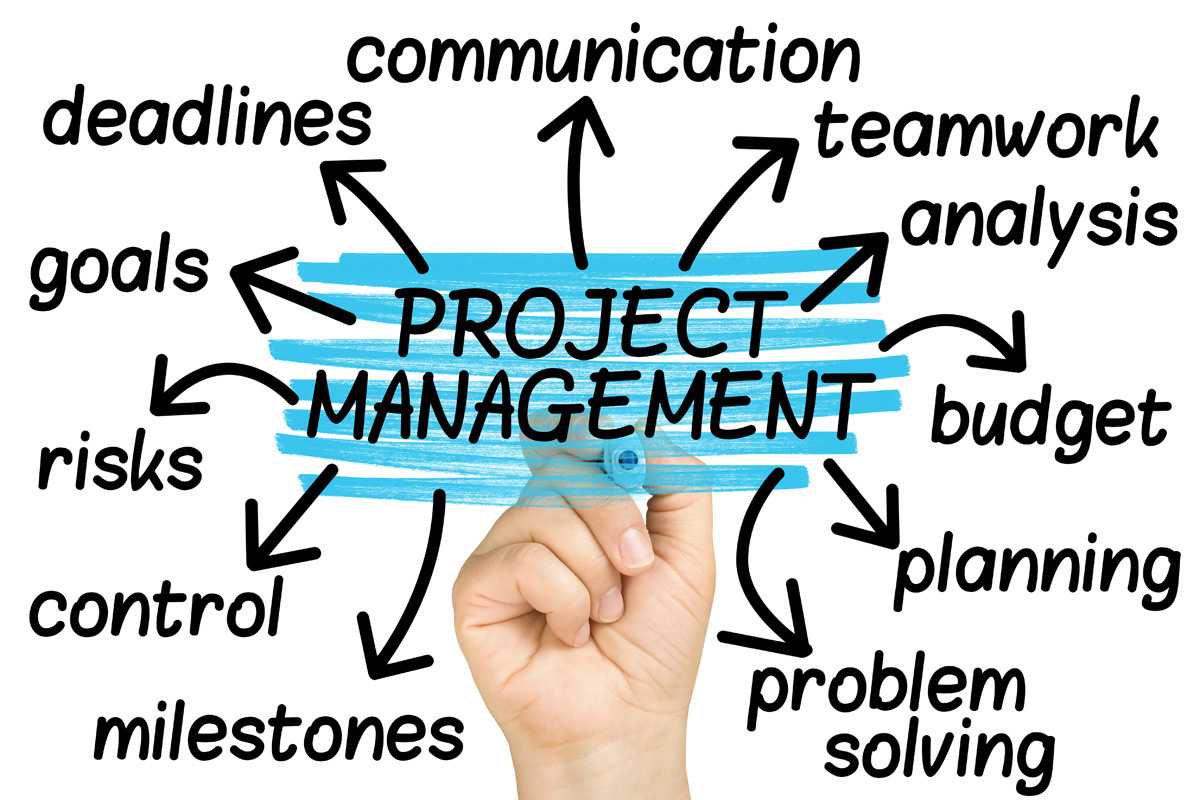 proiectare, project management